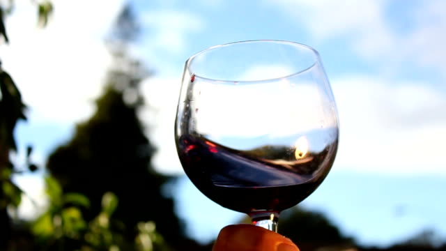 wine glass swirl Wine swirling in a glass, in slow motion, against a blue sky. red wine stock videos & royalty-free footage