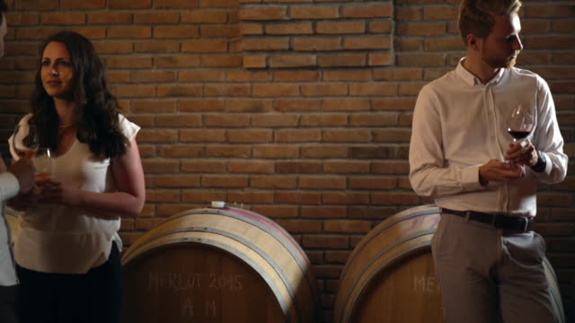 Wine tasting in a wine cellar, 4k. video