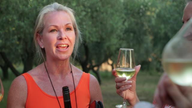 vinprovning i olive orchard - vin sommar fest bildbanksvideor och videomaterial från bakom kulisserna