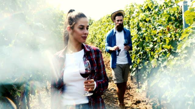 wine tasting in the countryside - azienda vinicola video stock e b–roll