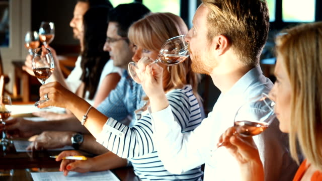 Wine tasting. Closeup side view of group people tasting different types of wines and discussing about visual appearance, smell, flavor and taste. There are three men and three women, seated around big table in a tasting room. winetasting stock videos & royalty-free footage