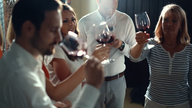 Wine tasting. Closeup of group people tasting different types of wines and discussing about visual appearance, smell, flavor and taste. There are three men and three women IN A WINE CELLAR. winetasting stock videos & royalty-free footage