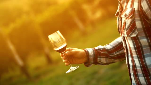 vídeos de stock, filmes e b-roll de degustação de vinho. - provando usando a boca