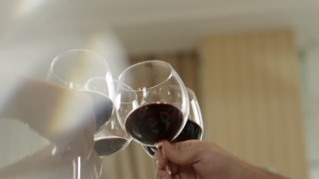 Wine toast video