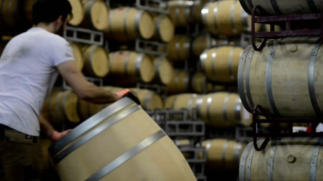 vídeos de stock e filmes b-roll de winemaker barrels moving up or down by rolling on the ground in a large storage cellar, bordeaux vineyard, france - barrica
