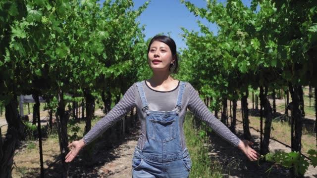 enologo soddisfatto delle sue piante di frutta - azienda vinicola video stock e b–roll