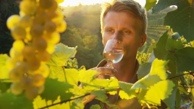 HD: Winemaker Tasting Fresh Wine video