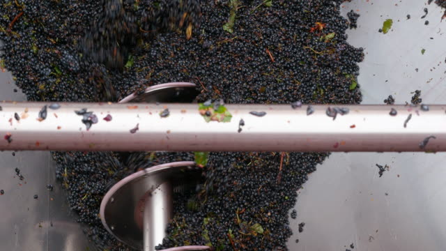 Winemaking video