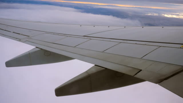 Wing of a Plane, Clouds and Sky Seen Through a Window While Flying Wing of a Plane, Clouds and Sky Seen Through a Window While Flying animal limb stock videos & royalty-free footage