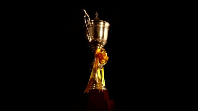 Winners Trophy loop HD
