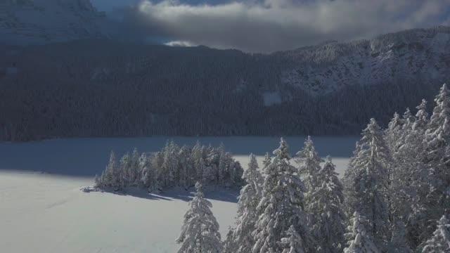 stockvideo's en b-roll-footage met de luchtmeningen van de winter in sneeuwbos - sneeuwkap