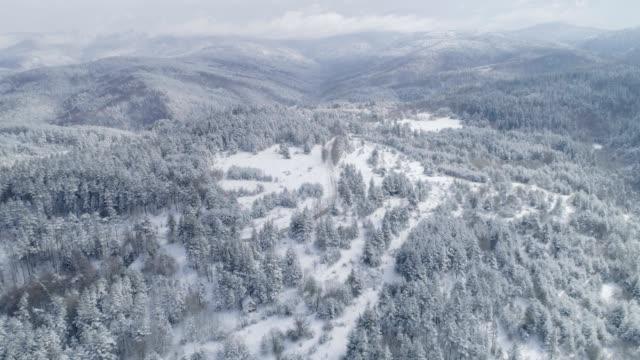 vintern. drönare flygning över snötäckta berg, vinter landskap, tall skog, finland, taiga, natur, utomhus - finland bildbanksvideor och videomaterial från bakom kulisserna