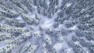 istock Winter forest, aerial view 1247698808