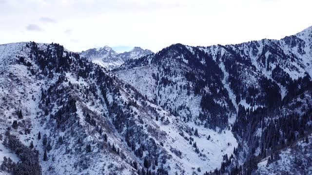 겨울 숲과 눈으로 덮인 높은 산 - mountain top 스톡 비디오 및 b-롤 화면