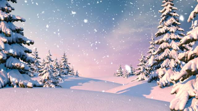 zimowy las, boże narodzenie tło - jodła filmów i materiałów b-roll