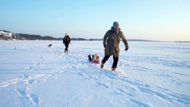 vinternöje, snö, familj pulka med hund på vintern - finland bildbanksvideor och videomaterial från bakom kulisserna