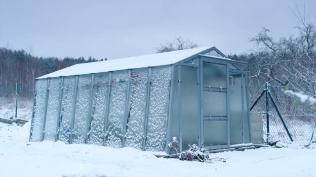 Winter garden with greenhouse