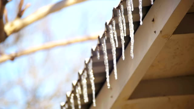 Winter Icicles Melting on the Roof Under the Spring Sun and Dripping from their Tips. Slow Motion video