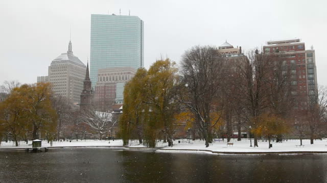 Winter in Boston video