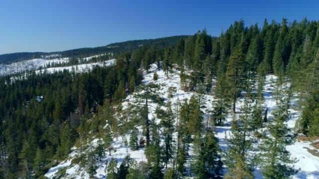 山の冬 - カリフォルニアシエラネバダ点の映像素材/bロール