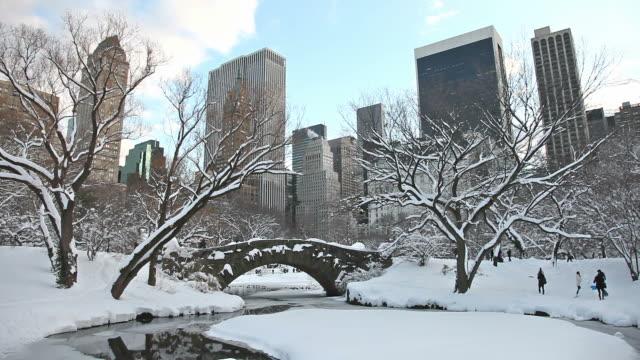 winter in new york city - vier jahreszeiten stock-videos und b-roll-filmmaterial