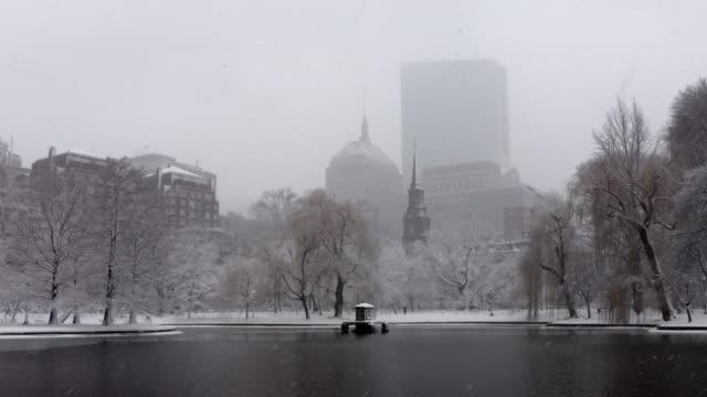 Winter in the Boston Public Garden video