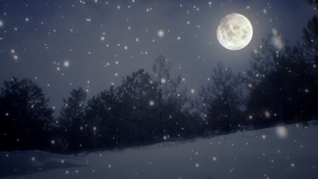 Winter landscape and snow with moon (loopable) video