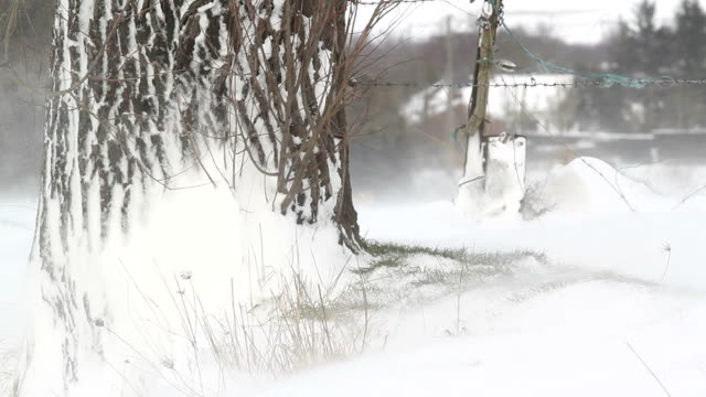 Winter landscape natural beauty : countryside scenery under snow fall video