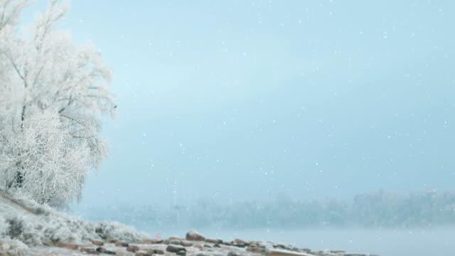 winter-landschaft ruhigen morgen - schneeflocke sonnenaufgang stock-videos und b-roll-filmmaterial