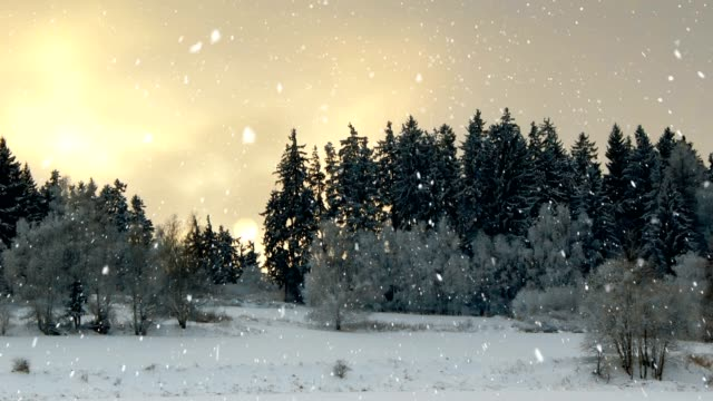 Winter landscape seamless loop background with snowflakes video