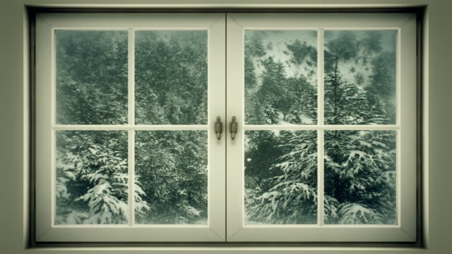 Winter landscape seen through window (loopable) video