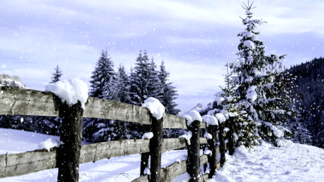winter landscape (loop)