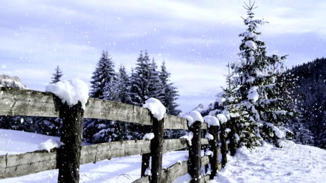 vídeos de stock, filmes e b-roll de paisagem do inverno (laço) - cena não urbana