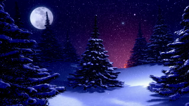 Winter landscape with Christmas tree decorated by polar star video