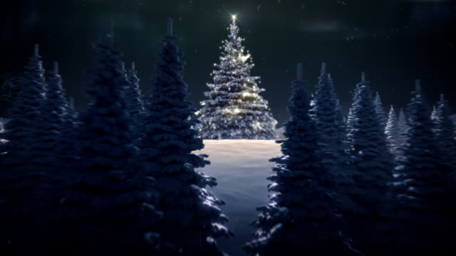 Winter landscape with Christmas tree - Stock Video video