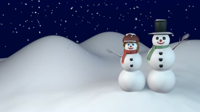 Winter night with snowman and snow-woman video