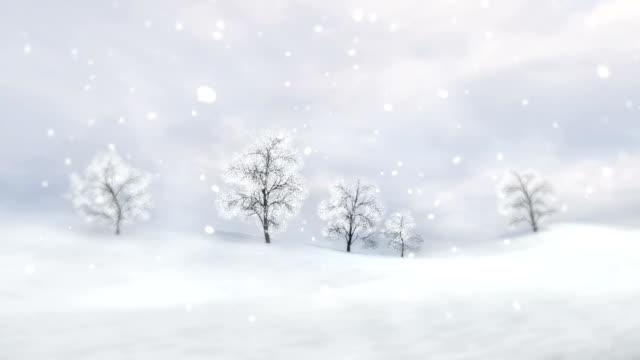 vídeos y material grabado en eventos de stock de llanuras de invierno con árboles de hojas caducas en nevadas fuertes - nieve amontonada