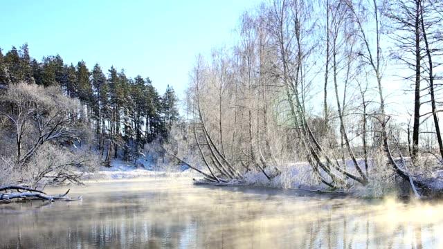 vídeos de stock, filmes e b-roll de rio de inverno no dia ensolarado - bétula