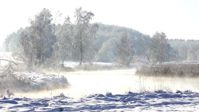 vidéos et rushes de rivière de paysage d'hiver - perfection