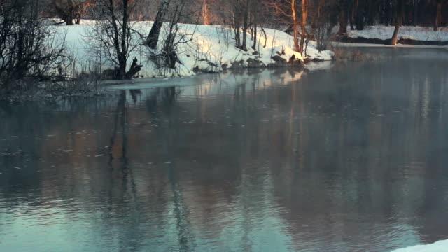 Winter river. Mist over river in winter park. Winter landscape. Misty river video