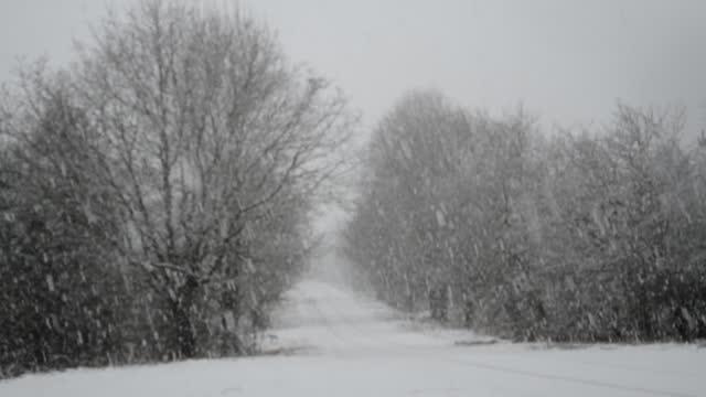 Winter road landscape video