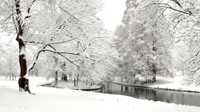 Winter scene video
