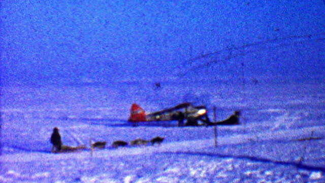 1957: Winter sled dogs riding past broken airplane into wilderness. video