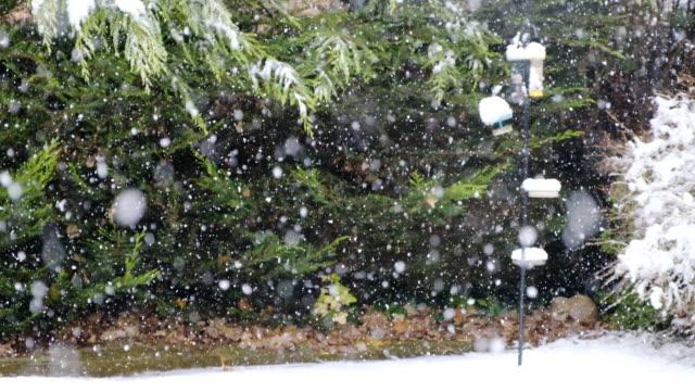 Winter snowfall in England video