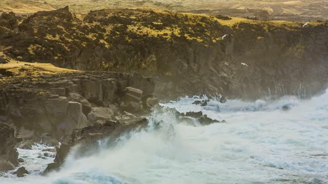 vídeos y material grabado en eventos de stock de tormenta de invierno en la costa de islandia - basalto