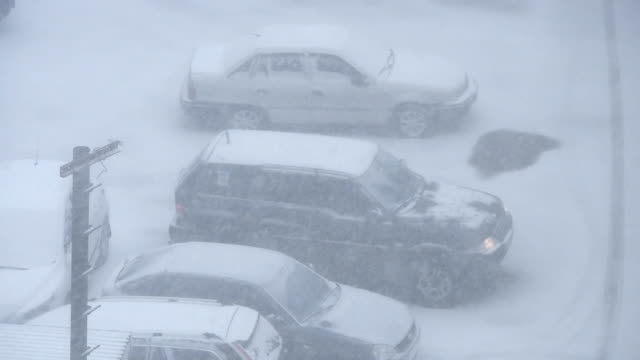 Winter storm video
