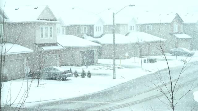 Winter video