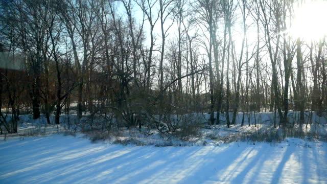 冬のウィンドウのバス移動 ビデオ