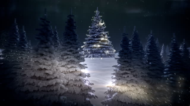 winter's tale - stock video - treedeo christmas stock videos & royalty-free footage