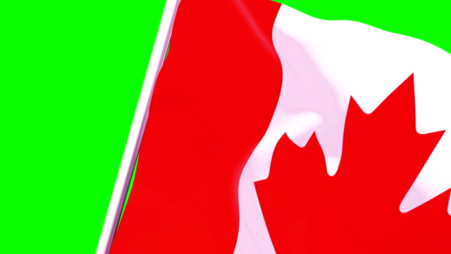 Wipe Transition Flag of Canada 4K 60 Fps
